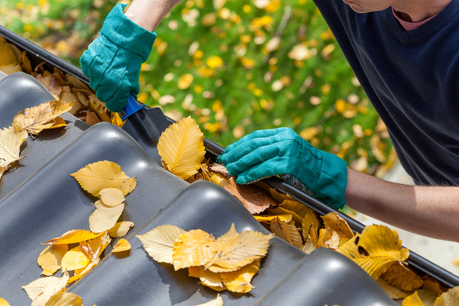 gutter cleaning clear leaves